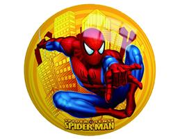Ball-Spider Man 9""