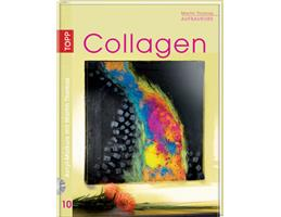 Acrylmalerei Band 10 - Collagen mit DVD von Martin Thomas